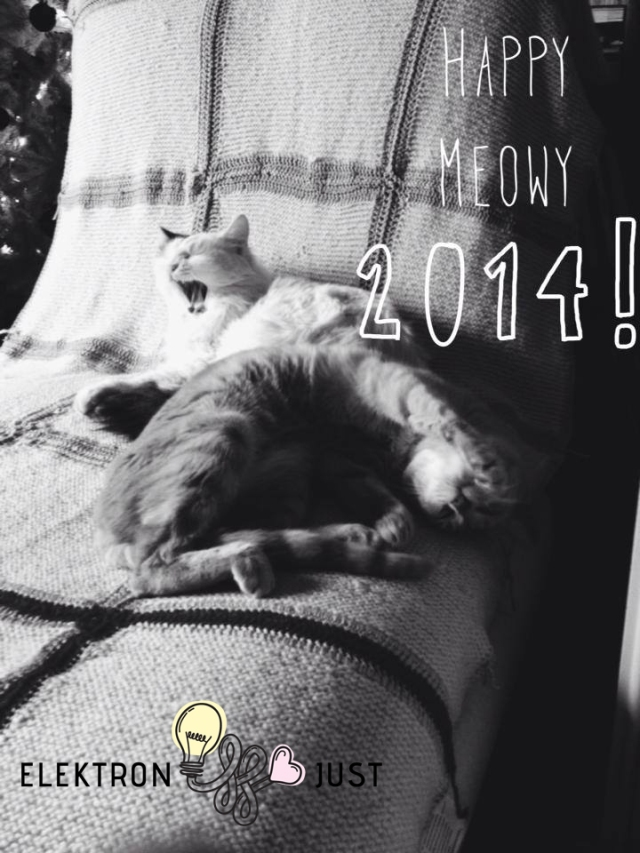 Happy, healthy, meowy new year!