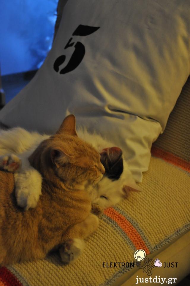 stencil_pillows_cats
